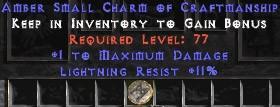 11 Resist Lightning w/ 1 Max Damage SC