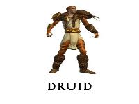 Druid Gears