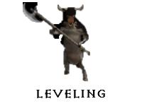 Level Service